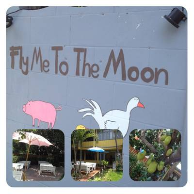  Fly Me To The Moon (Chiangmai )